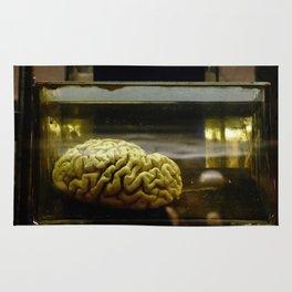 Brain in formalin Rug