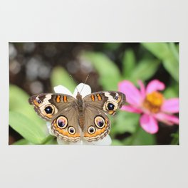 Beautiful Buckeye Butterfly Rug