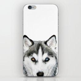 Siberian Husky dog with two eye color Dog illustration original painting print iPhone Skin