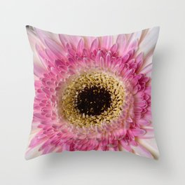 Gebera Daisy Throw Pillow