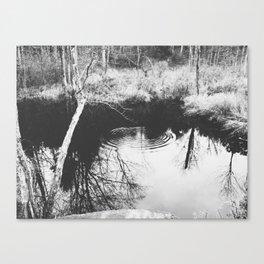 Autumn 5 Canvas Print