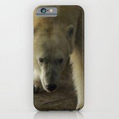 Anana the Polar Bear   iPhone 6s Slim Case