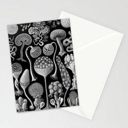 Slime Molds (Mycetozoa) by Ernst Haeckel Stationery Cards