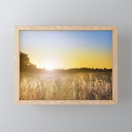 Sunset over Cornfield Framed Mini Art Print