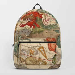 Star Atlas Vintage Constellation Map Ignace Gaston Pardies Backpack