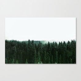 Woodland Magic Canvas Print