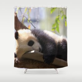 Marvelous Super Cute Little Baby Panda Relaxing In Tree Branches Ultra HD Shower Curtain