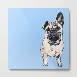 Cito the Pup  Metal Print