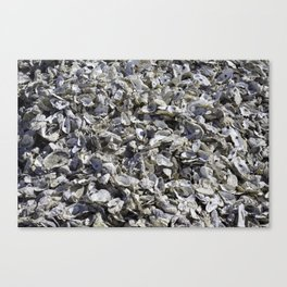 Shucked Oyster Shells Canvas Print