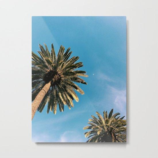 Palm Tree Portrait Metal Print