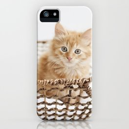 Pinky and the Basket iPhone Case
