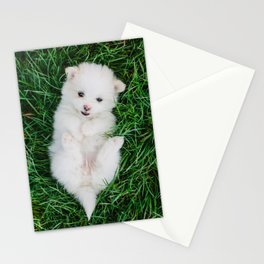 Fluffy White Cute Puppy Stationery Cards