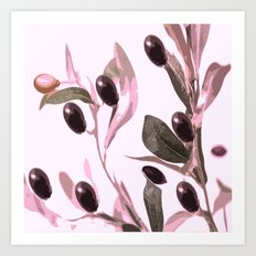 Olive tree branch with pink tones on white background Art Print