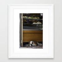 english bulldog Framed Art Prints featuring English Bulldog by sovichka
