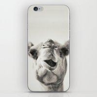 camel iPhone & iPod Skins featuring Camel by Maha Ahmad