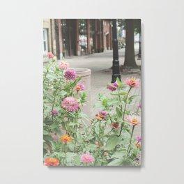 Flowers on a historic street Metal Print