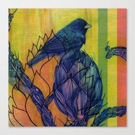 Artichoke Aloe Finch Air Canvas Print
