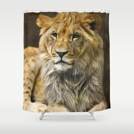 The young lion Shower Curtain