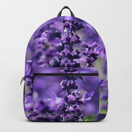 Lavender field Backpack