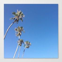 California Santa Barbara Canvas Print