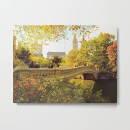 New York City Fall Foliage Metal Print