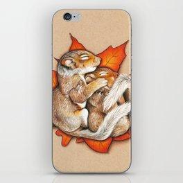 Autumn Squirrels iPhone Skin