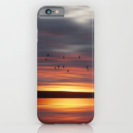 New horizon iPhone Case