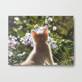 The Young observer Metal Print