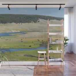 Yellowstone Bison Grazing Wall Mural