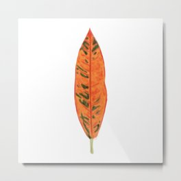 Falling for Petra Metal Print