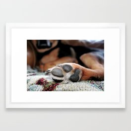 """paw prints"" Framed Art Print"