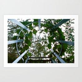Urban Vines Art Print