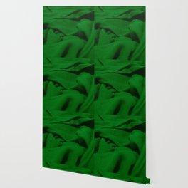 Green Velvet Dune Textile Folds Concept Photography Wallpaper