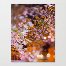Nature and light abstract Canvas Print
