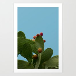 tropical, summer, cactus with a sea  blue color background Art Print