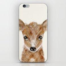 little deer fawn iPhone & iPod Skin