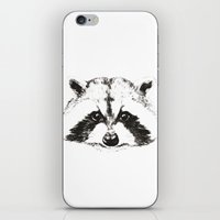 racoon iPhone & iPod Skins featuring racoon by eclecticliving