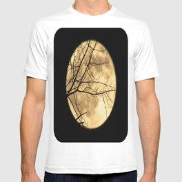 Shadows on the Moon T-shirt