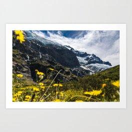 Flower Glacier Art Print