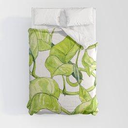 Devils Ivy Illustration Comforters