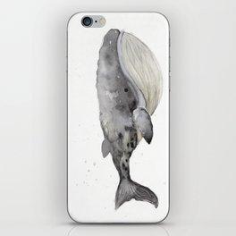 Whale 1 iPhone Skin