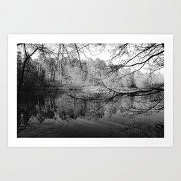 Along the lake , beneath the trees... Art Print