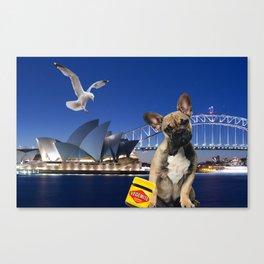 Achio in Sydney Canvas Print