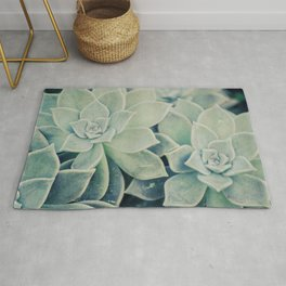 Botanical -- Jade, Mother-of-pearl, Ghost Plant Leaves Rug