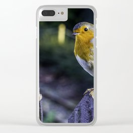 Mr. Robin. Clear iPhone Case