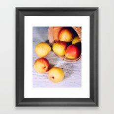 Falls bounty Framed Art Print