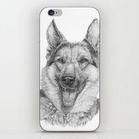 german iPhone & iPod Skins featuring German shephard by Doggyshop