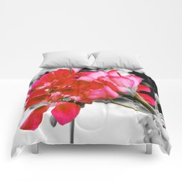 Flowers : Pop of Color Comforters