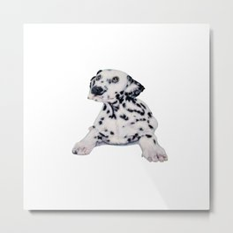 Needle felt Dalmatian puppy Metal Print