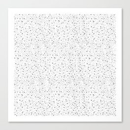 Star Dust Canvas Print